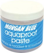 img_morganblue_aquqproof-paste02